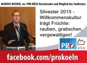 fb_wiener_silvester2015-300x219